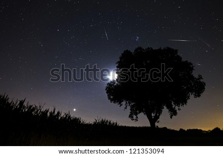 Beautiful image during the night of the Perseid meteor shower in the summer of 2012 in the Netherlands, showing a number of meteorites