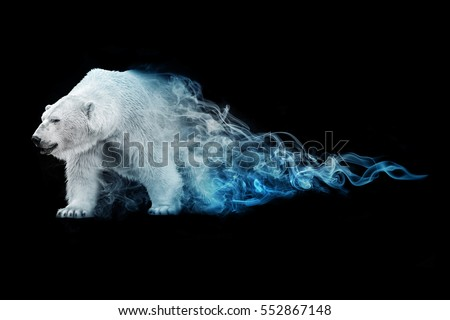 beautiful image of a polar bear, animal kingdom, south pole, antarctic wildlife, north pole