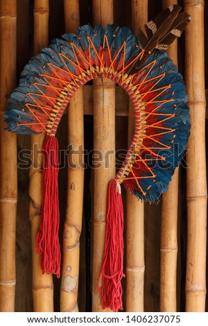 Beautiful Indigenous Headdress of Feathers #1406237075