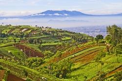 beautiful Indonesian landscape, west java, Bandung view