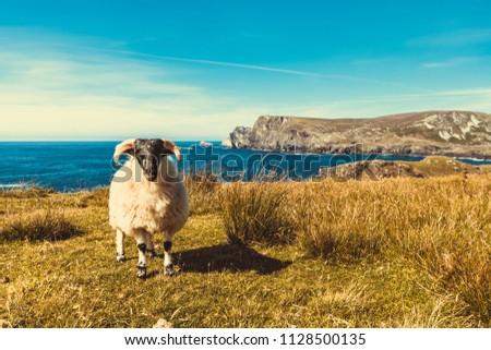 Beautiful Irish Wild Atlantic Way. Photo taken in Co Donegal. Ireland
