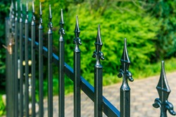 Beautiful Iron Fence with green background