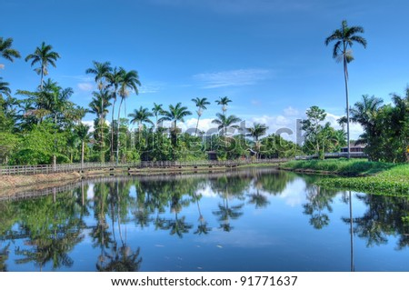 Beautiful Jamaican landscape with lake and palms