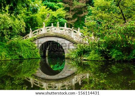 Beautiful Japanese garden