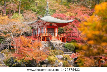 Beautiful japanese garden at Daigo-ji temple with colorful autumn season in, Kyoto, Japan. #1492375433