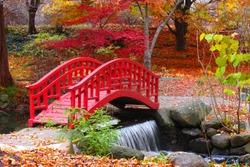 Beautiful Japanese garden in Michigan in autumn time