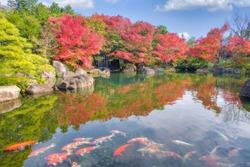 Beautiful Japanese garden style in autumn season