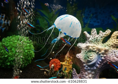 Stock Photo Beautiful jellyfish, medusa in the neon light with the fishes. Aquarium with blue jellyfish and lots of fish. Making an aquarium with corrals and ocean wildlife. Underwater life in ocean jellyfish.
