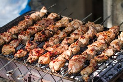 Beautiful juicy kebabs are prepared on the grill on the nature. Rest at nature.