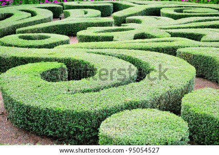 Beautiful labyrinth design in a house garden