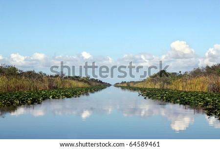 Beautiful lake landscape in Everglades Florida