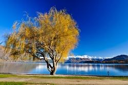 Beautiful lake of Newzealand