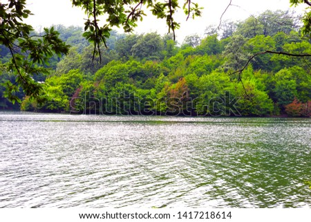 Beautiful lake overlooking the dense forest. Scenic view from the lake #1417218614