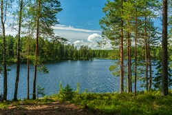 Beautiful lakeside view from a small lake in Sweden, with lush green trees, blue sky  and sunlight