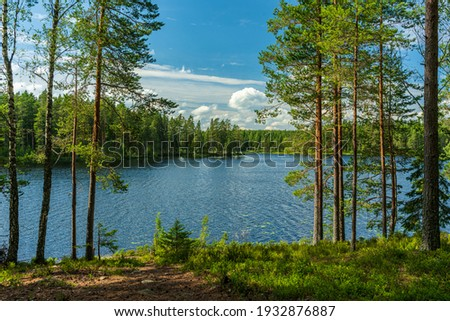 Beautiful lakeside view from a small lake in Sweden, with lush green trees, blue sky  and sunlight Сток-фото ©