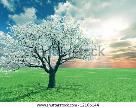 Beautiful landscape - Shutterstock ID 12106144