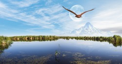 Beautiful landscape and Sultanmarshes (bird paradise) next to erciyes mountain, Kayseri - Red tailed hawk flying