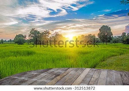beautiful landscape and wood floor  #312513872