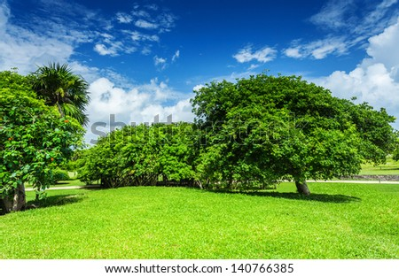 Beautiful landscape, blue cloudy sky, green grass field, leafy trees, sunny day, good weather, spring nature concept