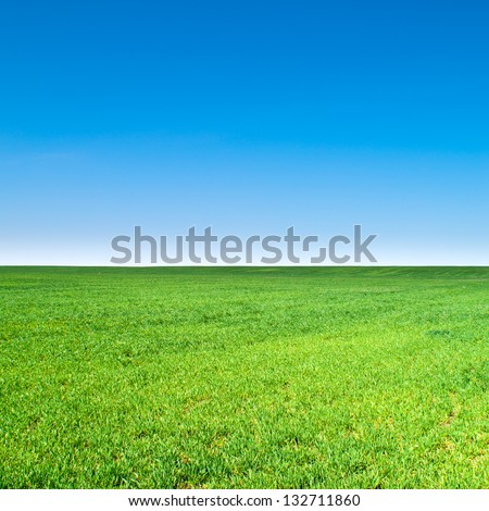beautiful landscape, clean blue sky #132711860