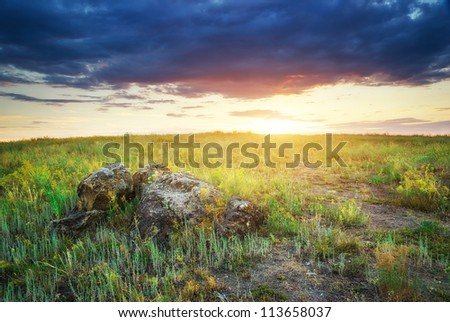 Beautiful landscape. Composition of nature.