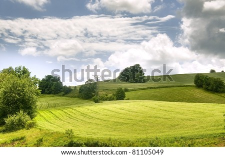 Beautiful landscape, green field and meadows