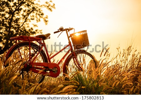 Shutterstock beautiful landscape image with Bicycle  at sunset