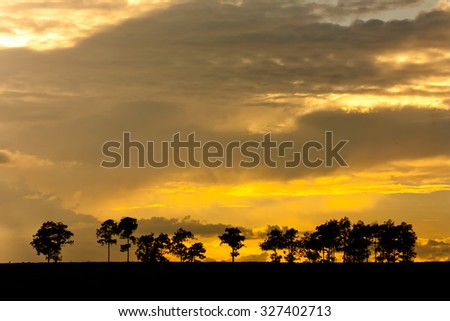 Beautiful landscape image with trees silhouette at sunset #327402713