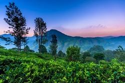 beautiful landscape in Little Adams's peak, Ella, Srilanka