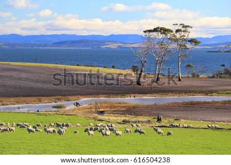 Beautiful Landscape in South Australia #616504238