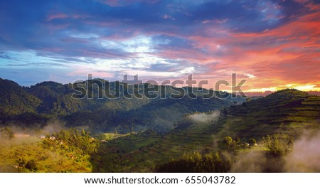 Shutterstock Beautiful landscape in southwestern Uganda, at the Bwindi Impenetrable Forest National Park, at the borders of Uganda, Congo and Rwanda. The Bwindi National Park is the home of the mountain gorillas.