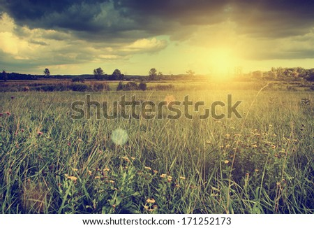 beautiful landscape in sunset