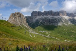 Beautiful landscape in the Italian Dolomites, with mountain flowers and view on rockface of Sella Group, Sunday 12 August 2018, Arabba, Italy