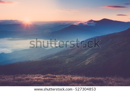 Beautiful landscape in the mountains at sunrise. View of foggy hills covered by forest. Filtered image:cross processed retro effect.  #527304853