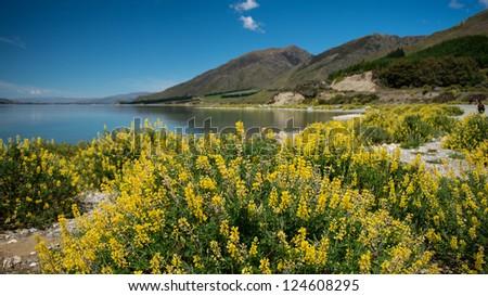 Beautiful landscape mountains and lake Wanaka, south island, New