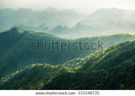beautiful landscape nature of rain forest and mountain background. abundance evergreen forest and foggy in spring. nice place for outdoor travel on vacation or holidays. tropical forest of thailand.