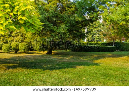 beautiful landscape of a park with green field, lawn with green grass, autumn is approaching, the leaves of the trees begin to yellow, image with a beautiful lawn in the park. beautiful wallpaper