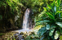 Beautiful landscape of Diamond waterfall on Saint Lucia island in Caribbean