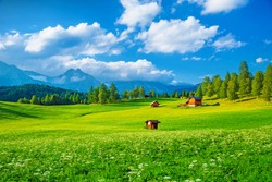 Beautiful landscape of valley in Alpine mountains, small houses in Seefeld, rural scene, majestic picturesque view