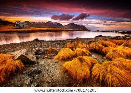 Beautiful landscape of Vestvagoy in the evening, dramatic pink sky over little house on the bank of river, part of Lofoten island, Arctic Circle, Nordland, Norway