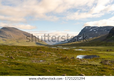 Beautiful landscape scenery at the Kings Trail Kungsleden in the swedish Lapland Stock foto ©