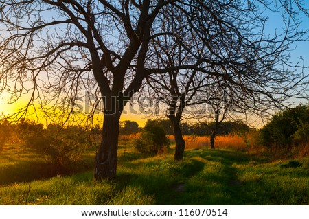 Beautiful landscape showing sunset in the untouched nature on sunny autumn day. - stock photo