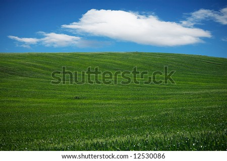 Beautiful landscape with a green field, a sky and clouds