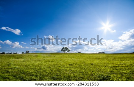 beautiful landscape with a lone tree, clouds and blue sky, natural colors