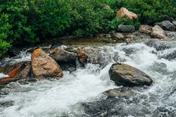 Beautiful landscape with big stones in water riffle of mountain river. Powerful water stream among boulders in mountain creek with rapids. Fast flow among rocks in highland brook. Small river close-up