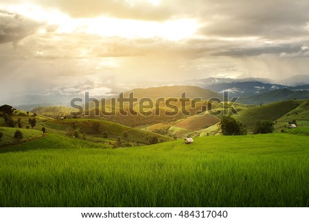 beautiful landscape with...