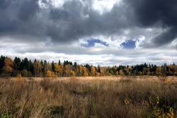 Beautiful landscape with field and forest with in autumn colors on overcast day horizontal view