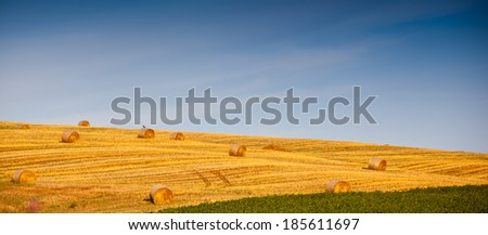 Beautiful landscape with straw bales