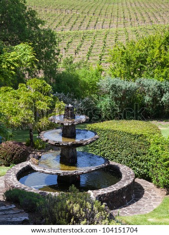 Beautiful landscape with water fountain and vineyards in Napa Valley, California. - stock photo