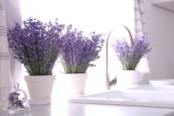 Beautiful lavender flowers on countertop near sink in kitchen. Space for text